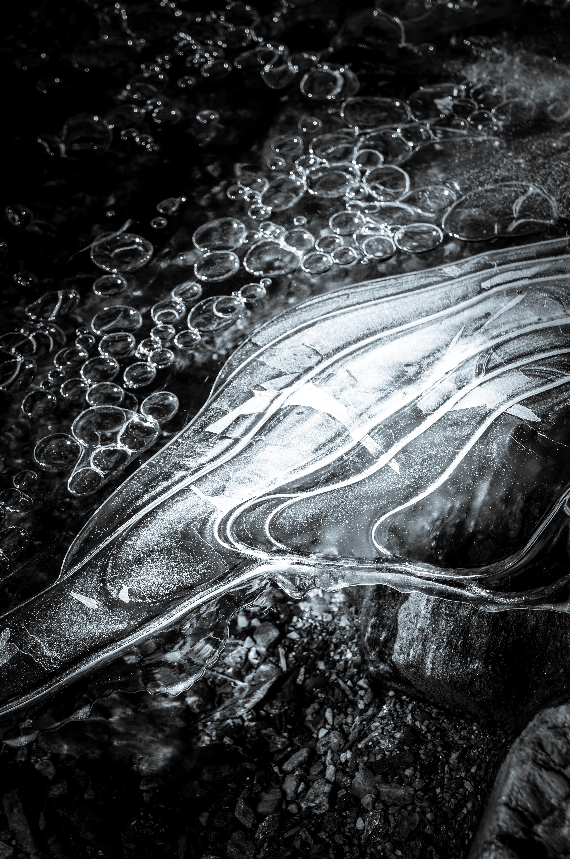 Diane Deery Richards, Moving Through, Digital Photography 2018